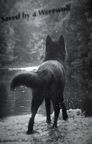 Saved by a Werewolf