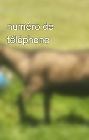 numéro de téléphone by miss_poneys_wtf