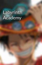 Labyrinth Academy by mRpRiNcE24