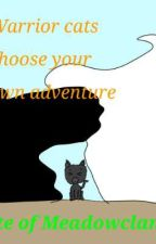 Warrior cats choose your own adventure: fate of MeadowClan by SunOrSunfire