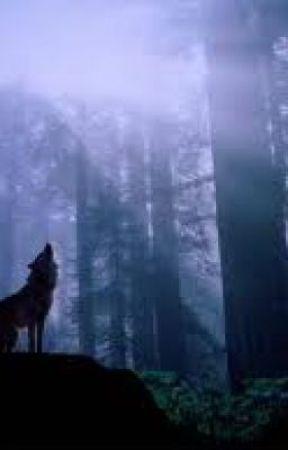 The White Wolf by kea_emalia