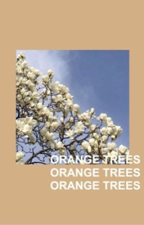Orange Trees by -DEFYINGGRAVITY