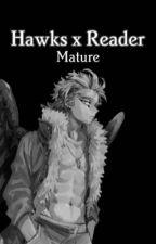 Mature Hawks x Reader by Hawks_Song_Bird