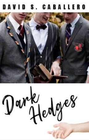 Dark Hedges by DaveNite27