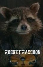 Rocket Raccoon by stoptalkingg