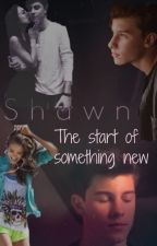 The start of something new (Shawn Mendes) by mendesheerio