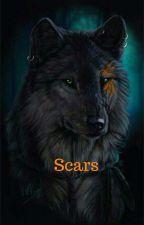 Scars by 4evalonewolf