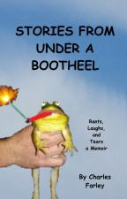 Stories From Under A Bootheel (Rants, Laughs, and Tears) by CFarley982