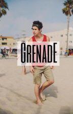 ||Grenade||nashgrier by drunkofnialler