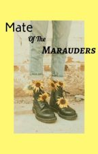 Mate of the Marauders (Harry Potter FanFic, Marauders Era) by itsy_bitsy_spidey