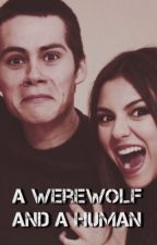 A Werewolf and a Human-Stiles Stilinski by TeenWolfHuman
