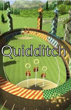 Quidditch! by HP_Next_Gen_Official