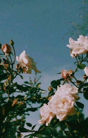 Mortal kombat 10 × Reader  by Mlmmdlmmm123