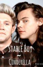 Stable Boy ~ Cinderella |Narry Storan| by Narryandwolfie