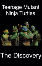 Teenage Mutant Ninja Turtles: The Discovery by purple_elephants13