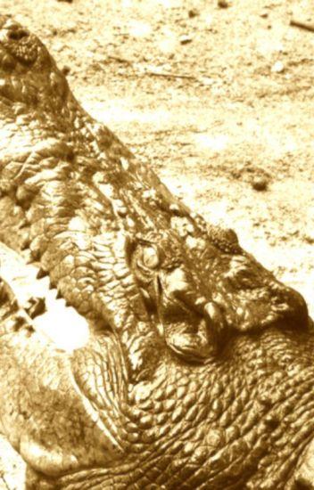 9 Deadliest African Animals: #1 & #2 will surprise you
