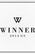 WINNER (song lyrics) by Silly_Pig