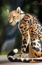 The Feline by lisachelsea