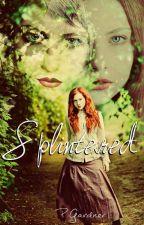 Splintered by PorcelainPixie