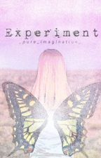 Experiment (Under Construction) by _pure_imagination_