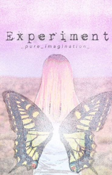Experiment (Completed)
