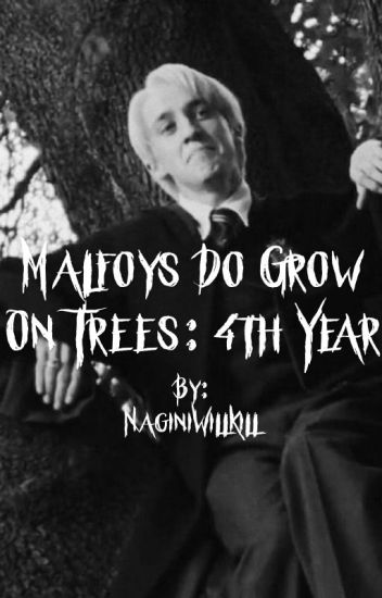 Malfoy's Do Grow on Trees: 4th year