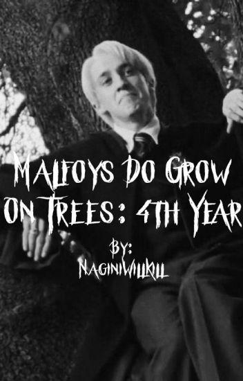 Malfoy's Do Grow on Trees: 4th year