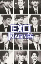 EXO Imagines [ON-HOLD] by AianneLozada