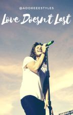 LOVE DOESN'T LAST || H.S Book 2 by adoreeestyles