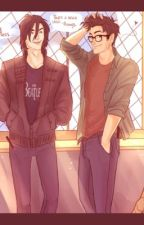 (BOOK THREE) Harry Potter and Percy Jackson Crossover by annabethchase916