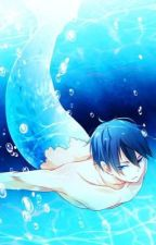 Mermaid! Haruka X Reader (Free!)- A Mermaid's Tail by XHibariTheCarnivoreX