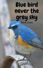 Blue bird never the grey sky by geekqueen44
