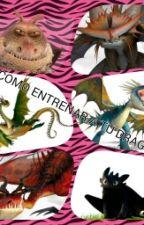 Como entrenar a tu dragón 3 by FennekinCharmander