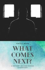 What Comes Next? A Detroit: Become Human Afterstory by LovelyTurtleBeans