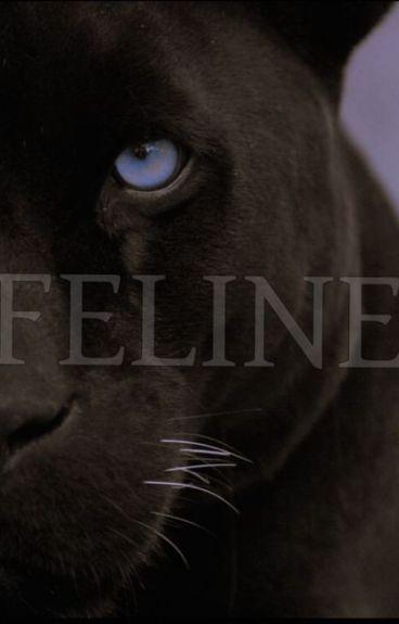 Feline (Terminada)