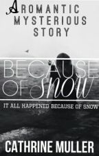 Because of snow. by CathrineMuller