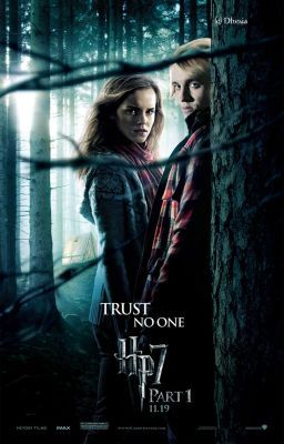 Hermione granger and the fight for love dramione on - Harry potter hermione granger fanfiction ...