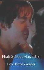 High School Musical 2: Troy Bolton x reader by harrypotter010803