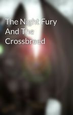 The Night Fury And The Crossbreed by httydmelon