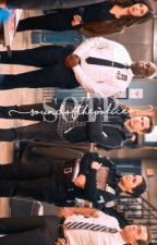 sound of the police,          b99 apply fic by -chidischili