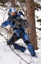 Agent Michigan (a Red vs Blue freelancer fan fiction) by wash333