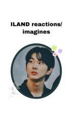 ILAND reactions/imagines  by sshania_hhhhh