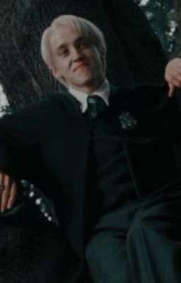 Đọc truyện ( Draco x You) Cô ấy là của tao