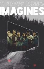 The Maze Runner - Imagines. by -inlovewithharry