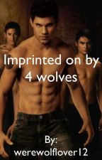 Imprinted on by 4 wolves by werewolflover12