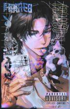 𝑻𝒉𝒆 2𝒏𝒅 𝑴𝒆𝒎𝒃𝒆𝒓 [ Black Clover X Male Reader ] by Ichiwu