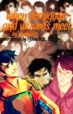 When Demigods and Wizards Meet by not_sasha