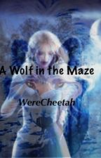 A wolf in the maze (a maze runner fanfic) {ON HOLD} by Werecheetah