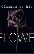 FLOWER by hailey9429