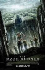 The Maze Runner Imagines and Preferences by fandomsbaby